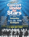 Concert Under the Stars